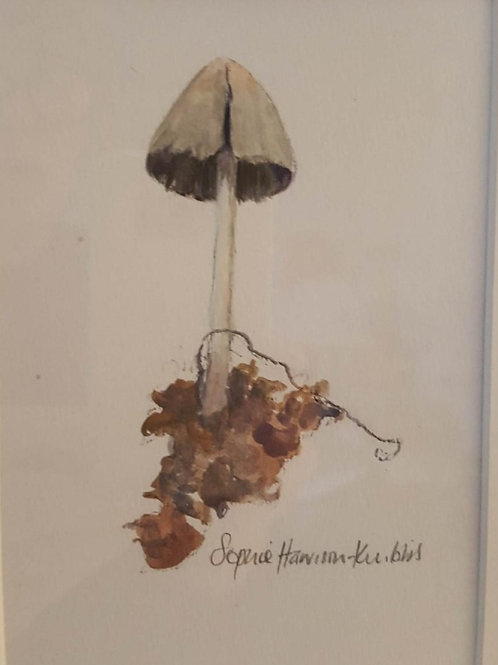 Ink Cap by Sophie Harrison-Knibbs