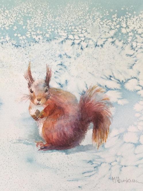 Red Squirrel in Winter by Margaret Dinkeldein