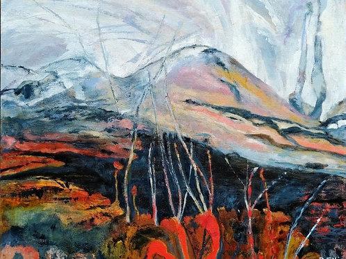 Glen Shieldaig, Scottish Highlands by Deirdre Ellis