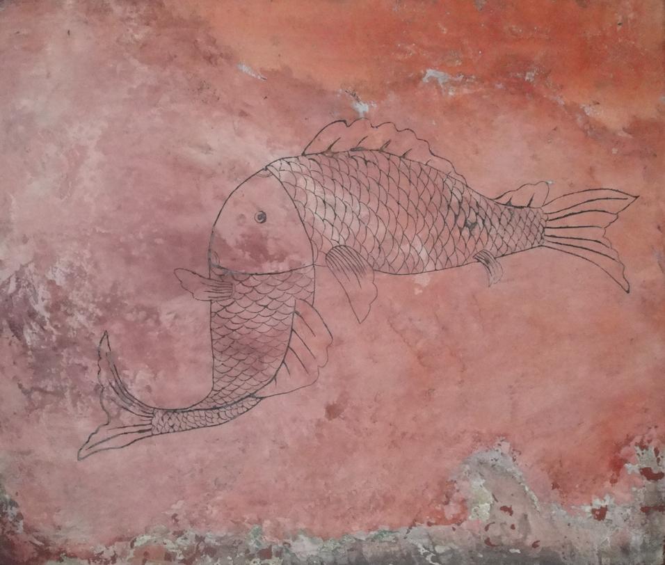 Mongolian Fish