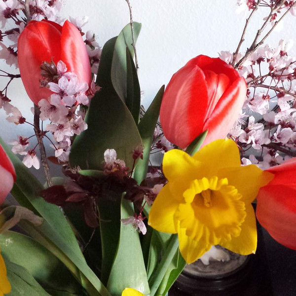 DECORATE YOUR HOME WITH REAL FLOWERS.