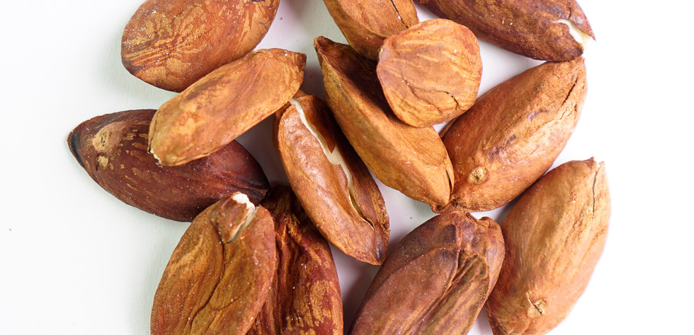 Kenari Nuts - Kawanasi 2.jpg
