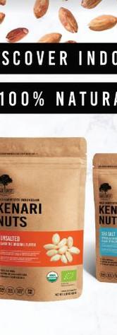 New visual Kenari export.JPG