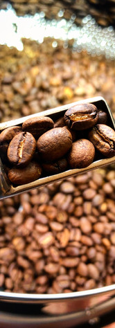 Coffee Roasting.JPG