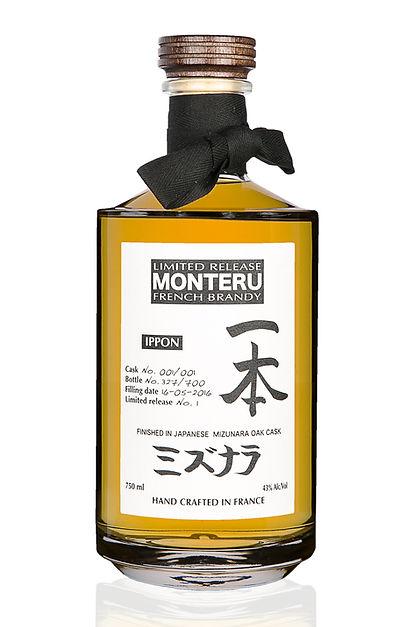 Monteru-Ippon-2_a.jpg