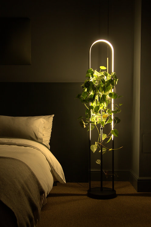 Arch smart plant lamp by Massimo Cappella