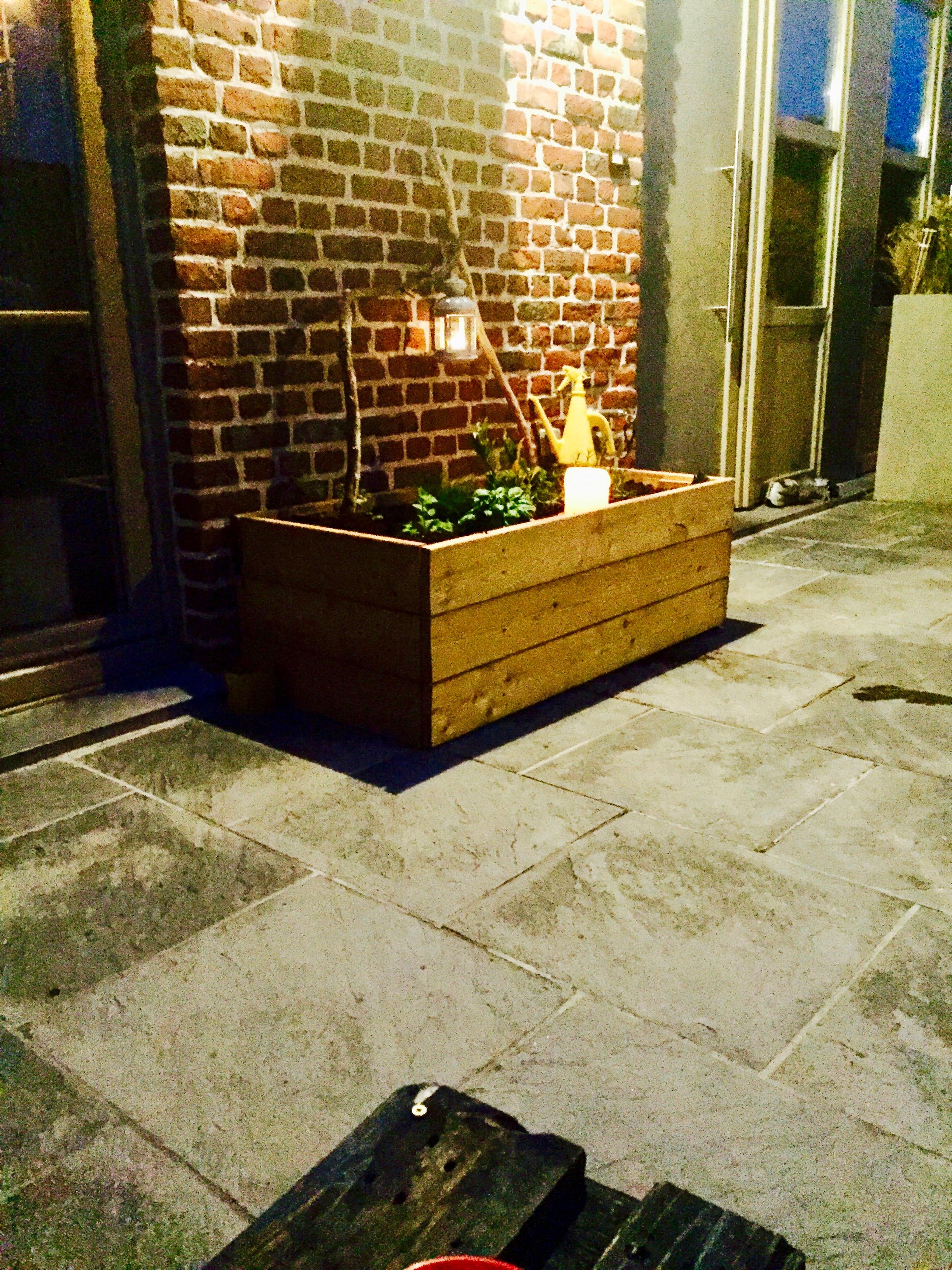 Plantes / bougies / bac / lanterne