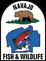 DFW Logo transparant.png