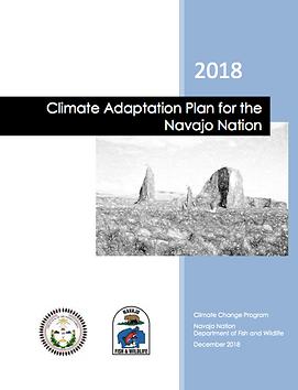 adaptation plan.png