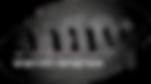 logo shvung  black.png