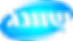 logo shvung  blu - small bright.png
