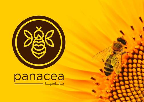 panacea_02d copy_Page_18.jpg