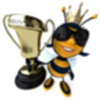 The Money Bee | About us | Mortgage Broker, Intermediary | Stafford UK