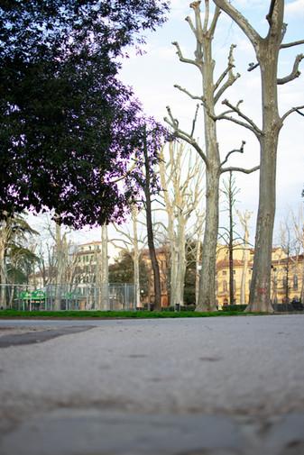 Piazza d'Azeglio