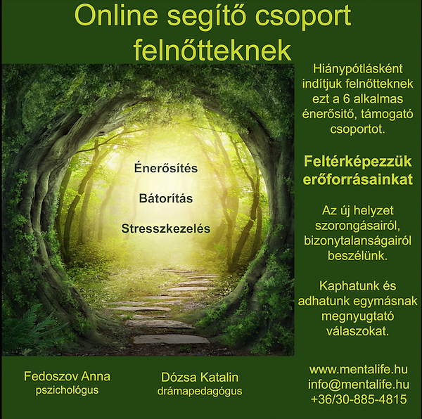 Online Felnott Csoport.png