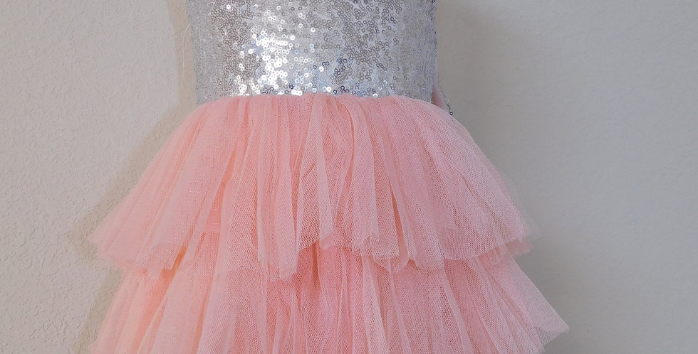 Silver Sequin and Light Pink Tulle Dress