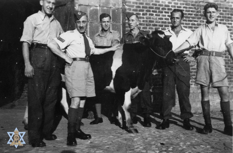 עם פרה בחוה החקלאית