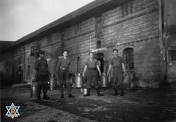 שבויים בחוה חקלאית