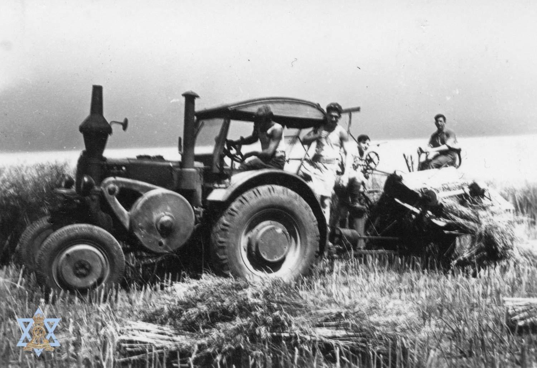 בחוה החקלאית