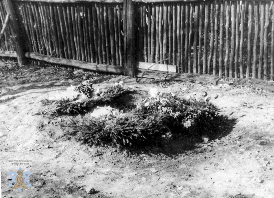 קבר טרי