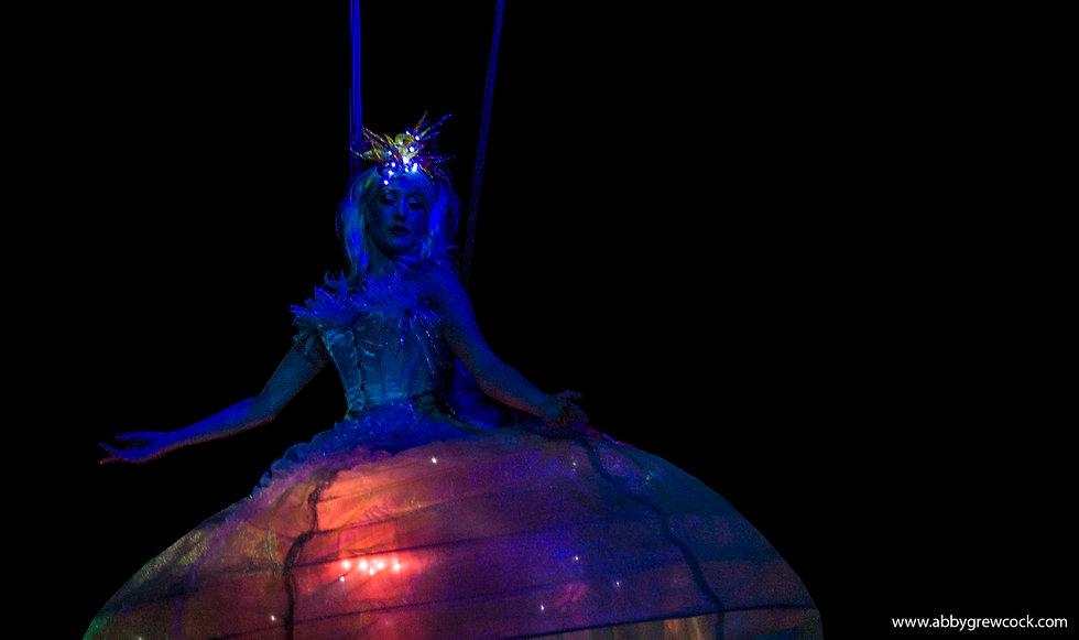 Harness Aerial Jellyfish