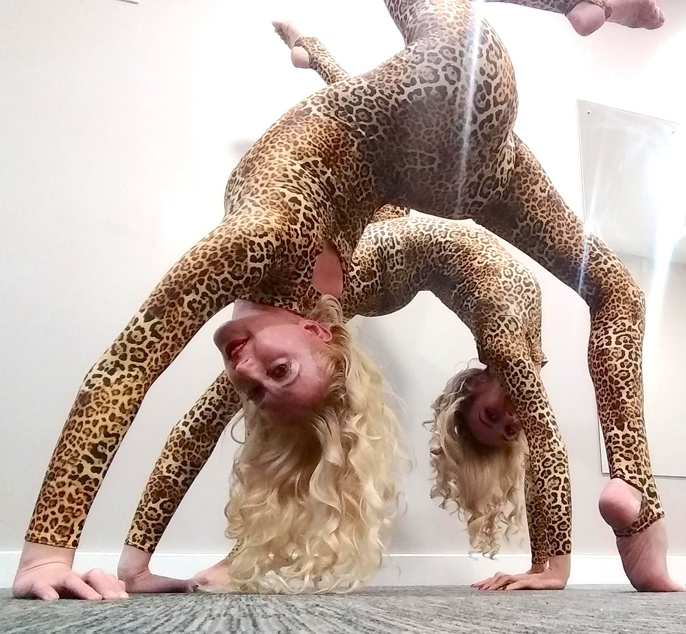 Two aerialists backstage performing backbends in leopard print catsuits