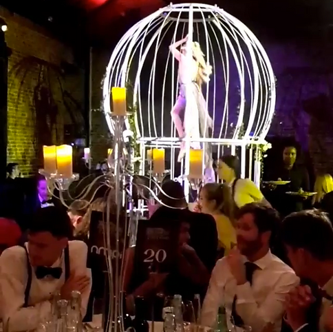 Rapunzel Twisted Fairytale Aerial Hoop Act in Birdcage Prop at Black Tie Gala