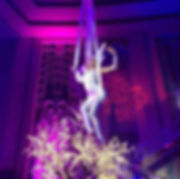 aerial slings performance at celebrity party