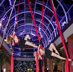 Circus Themed Silks Act