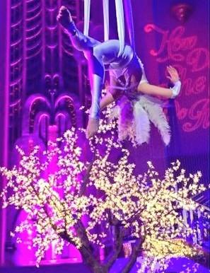 Aerial Showgirl for Lisa Tchenguiz's 50th