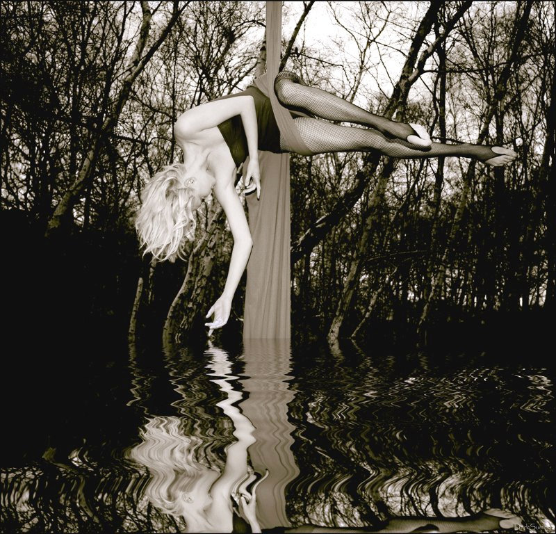 Silks performance over water in the woods