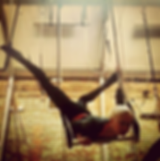 Static Trapeze training in London