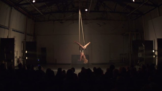 Dance Trapeze Act