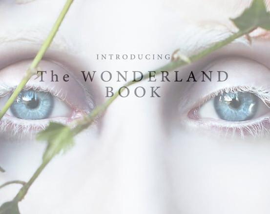 The Wonderland Book