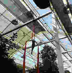Glasshouse Wisley Event Entertainment Silks