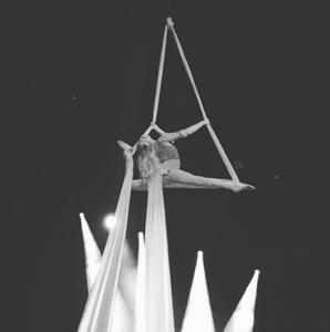 Flexible aerialist performing on silks
