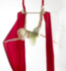 Trapeze and Silks