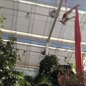 Silks Performance at RHS Garden Wisley
