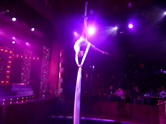 Cruise Ship Silks Performer