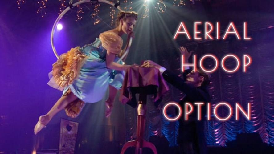 Aerial Hoop Option