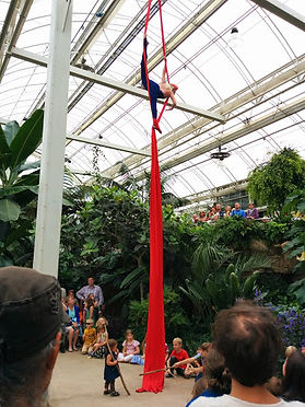 Wisley Arts Festival 2014 Silks performance