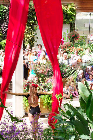 Katie Hardwick silks performance RHS Wisley Arts Festival 2015 Glasshouse