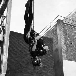 Spider Doubles Trapeze Act Circus Suburbia