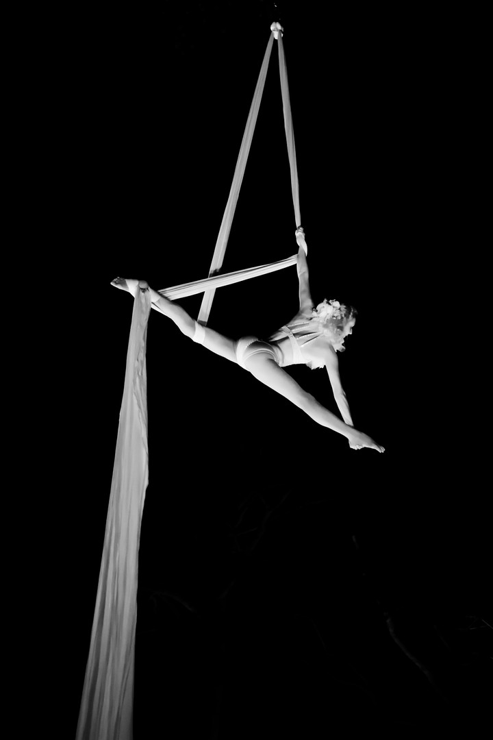 Woodland Creature Themed Silks Act