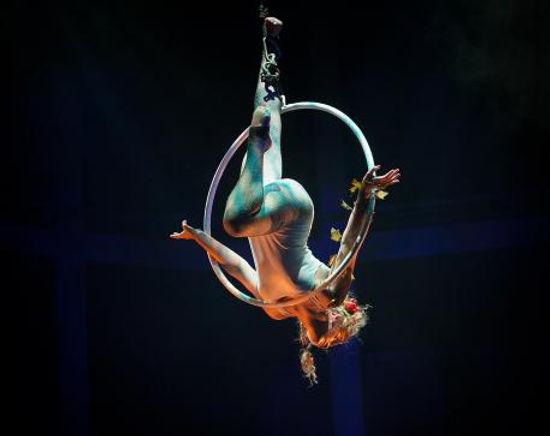 Circus Suburbia Aerial Hoop