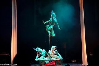 Group circus act for hire