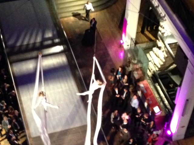 Viva Silks Act at the Science Museum
