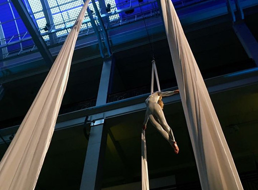 Aerial Acrobatics in the Science Museum