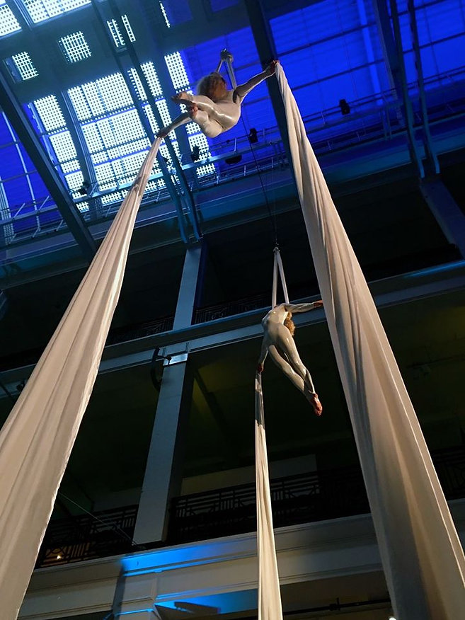 Viva Aerial Dance Science Museum Silks 2016