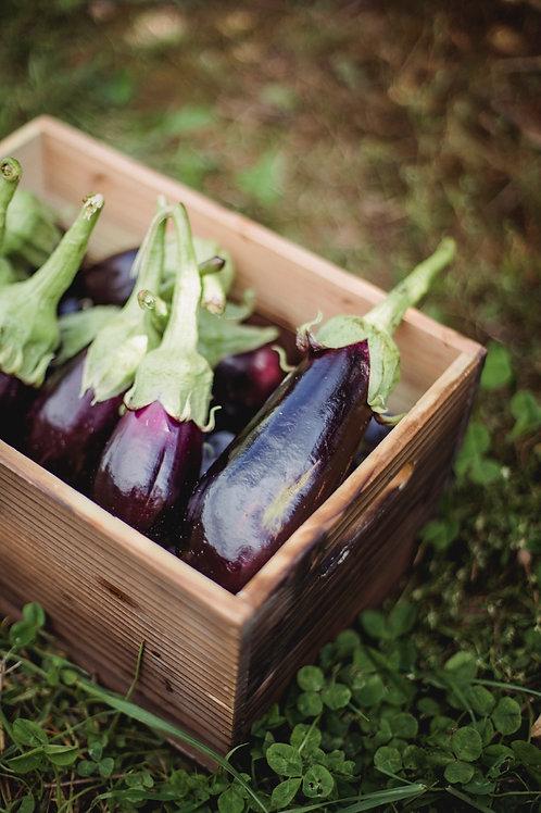 aubergine (le kg)